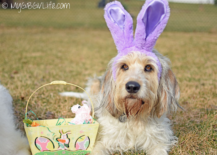 My GBGV Life Happy Easter 2016