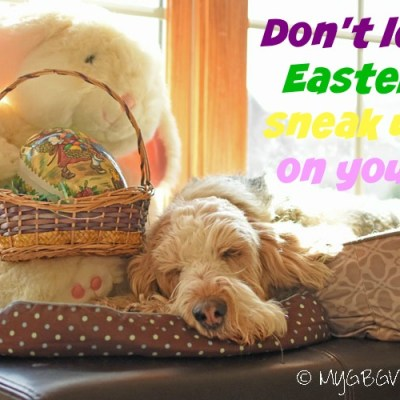 Don't Let Easter Sneak Up On You