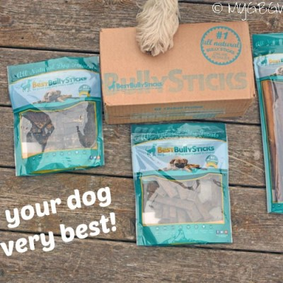Best Bully Sticks – Give Your Dog The Very Best