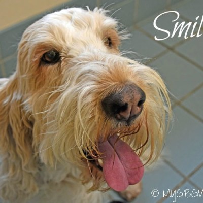 Smile Selfie