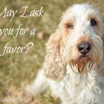 May I Ask You A Favor?