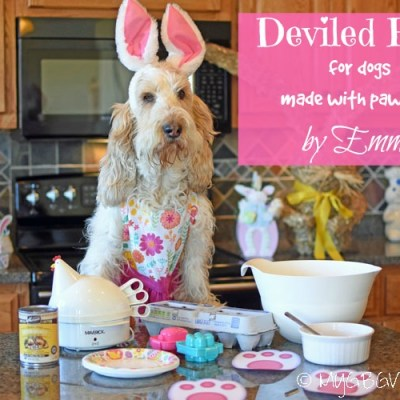 Deviled Eggs For Dogs Made With Paw Love
