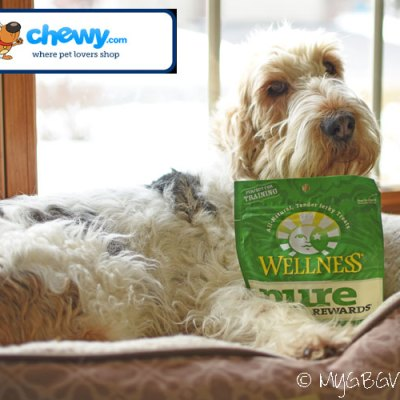 High Protein Training Treats For Your Dog #ChewyInfluencer