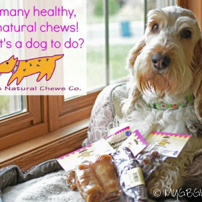 5 Tantalizingly Tasty All Natural Dog Chews