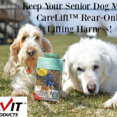 Improve Dog Mobility With A Rear-Only Lifting Harness {Giveaway}