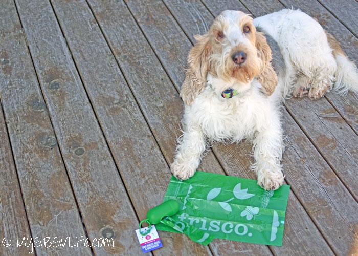 My GBGV Life frisco - A New Premium Waste Bag