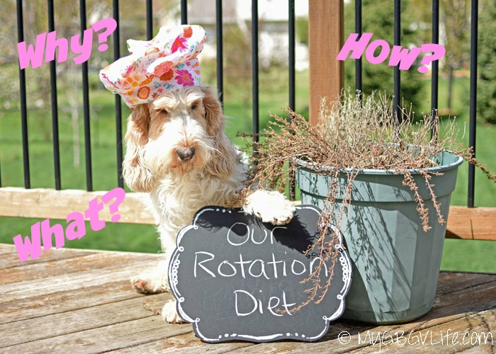 My GBGV Life What Is A Rotation Diet And Why Are We On One?