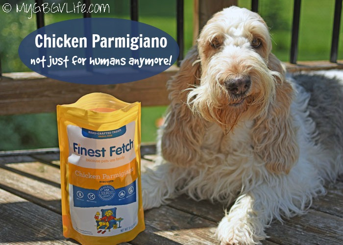 My GBGV Life Chicken Parmigiano - Not Just For Humans Anymore!
