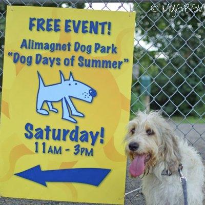 Dog Days Of Summer 2016
