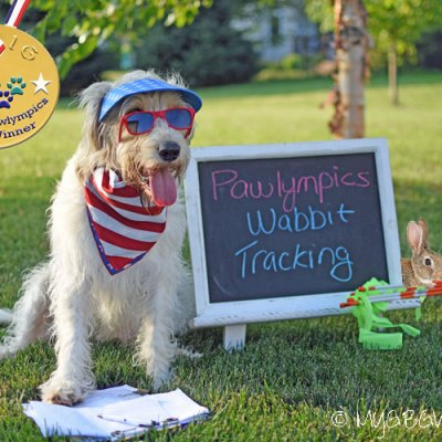 Going For Gold In Wabbit Tracking – The 2016 Pawlympics