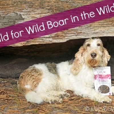 Emma Is Wild For Wild Boar In The Wild