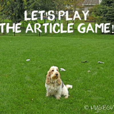 Let's Play The Article Game!