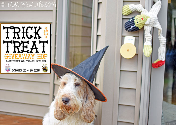 My GBGV Life Ding Dong - Trick Or Treat Giveaway Hop