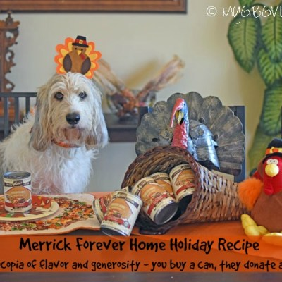 Forever Home – A Cornucopia Of Flavor And Generosity