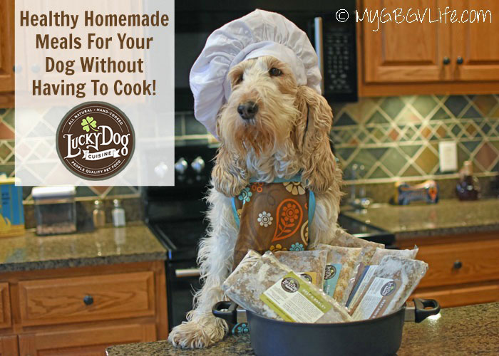 My GBGV Life Healthy Homemade Meals For Your Dog Without Having To Cook