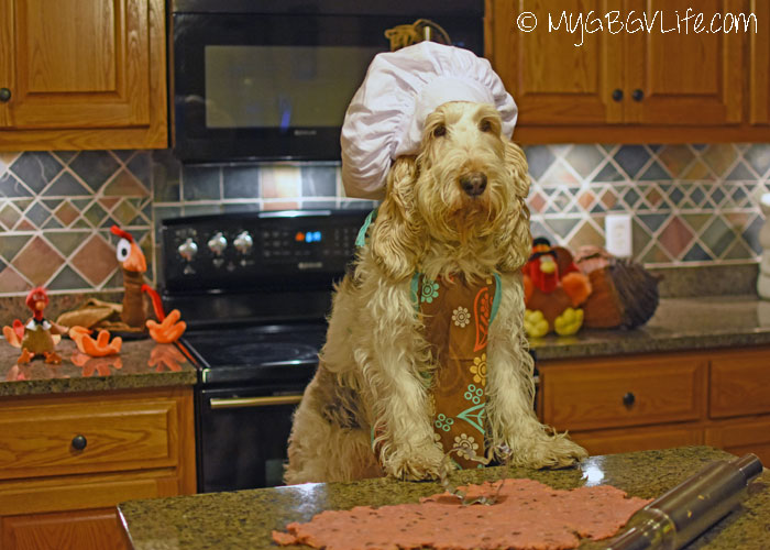 My GBGV Life Chef Emma's All In One Thanksgiving Recipe For Dogs