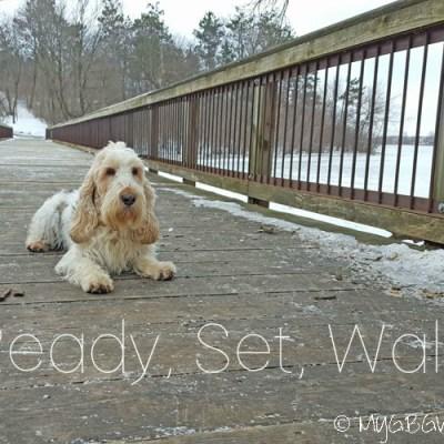 A Chilly, Weekend, Winter Walk