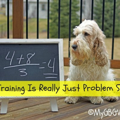 Dog Training Is Really Just Problem Solving