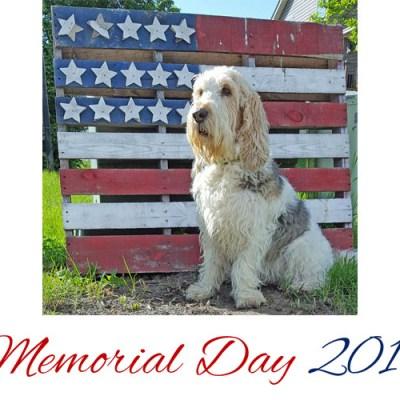 Today We Celebrate Memorial Day 2017