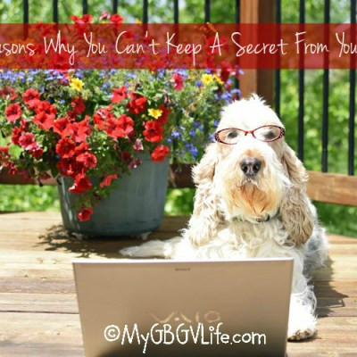 3 Reasons Why You Can't Keep A Secret From Your Dog