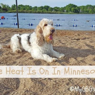 The Heat Is On In Minnesota!