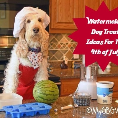 Watermelon Dog Treat Ideas For The 4th Of July