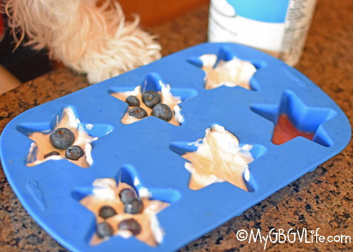 My GBGV Life Watermelon Dog Treat Ideas For The 4th Of July