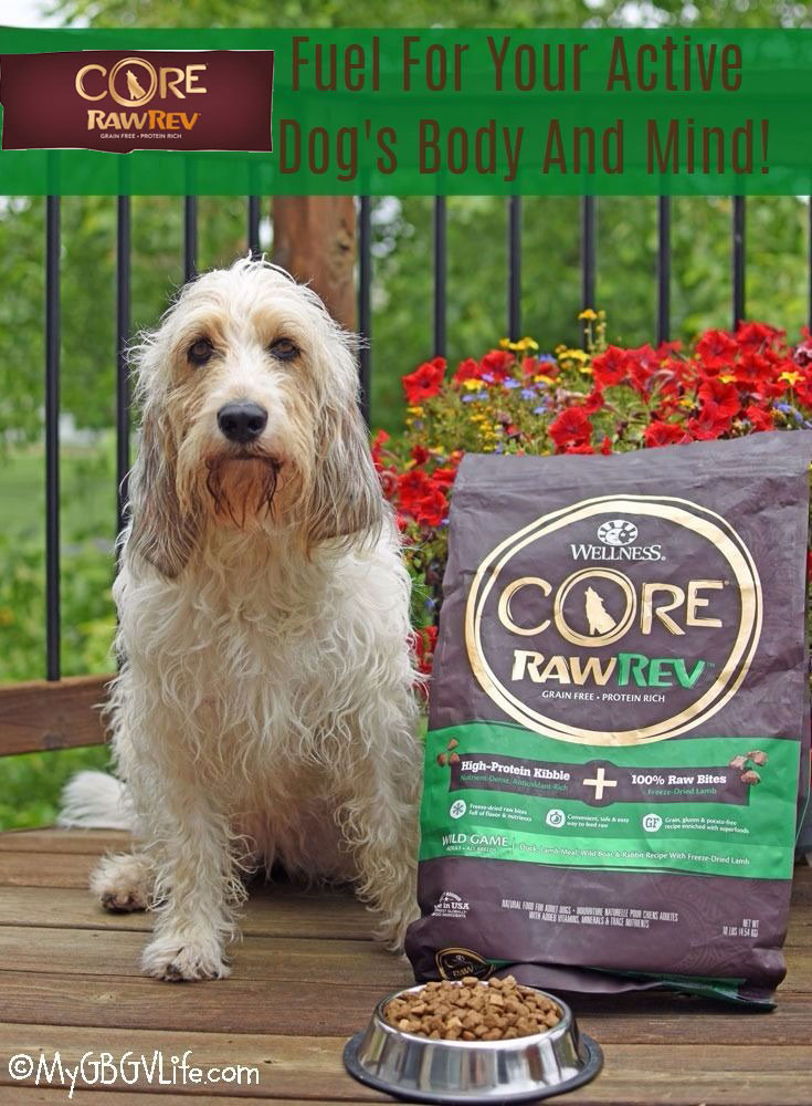 My GBGV Life Fuel For Your Active Dog's Body And Mind!
