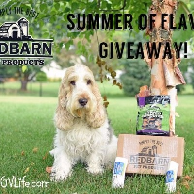 It's Filled Bones In The Summer Of Flavor Giveaway!