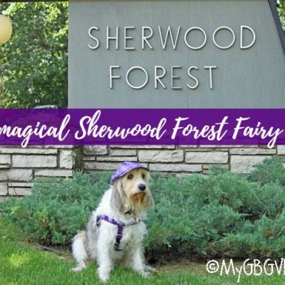 The Magical Sherwood Forest Fairy Tree