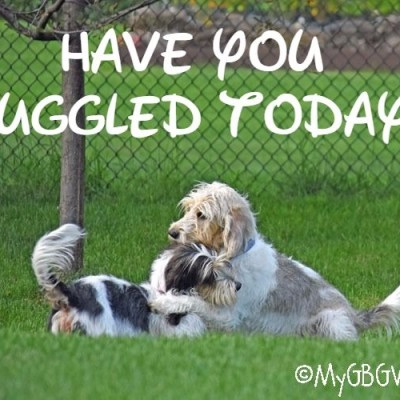 Have You Huggled Today?