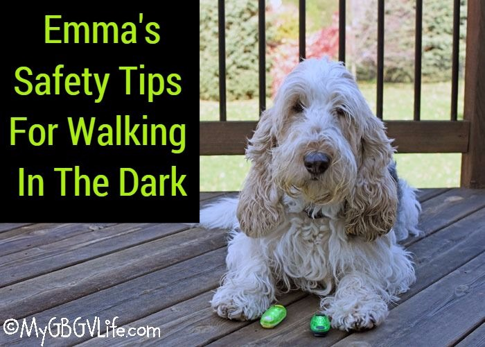 My GBGV Life Emma's Safety Tips For Walking In The Dark
