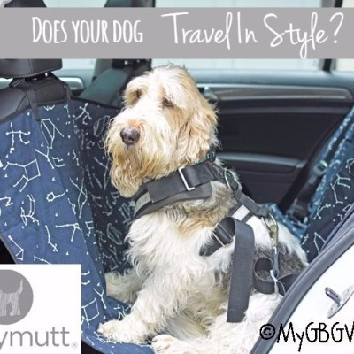 Does Your Dog Travel In Style? She Sure Can With Molly Mutt!
