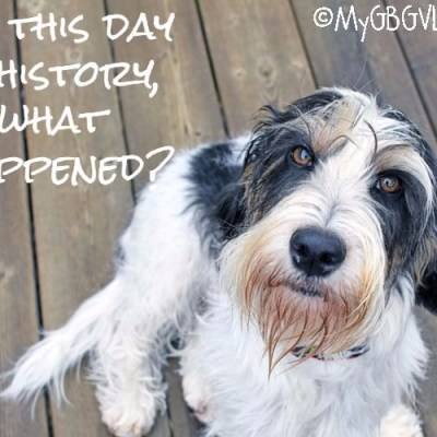 On This Day In History, What Happened?