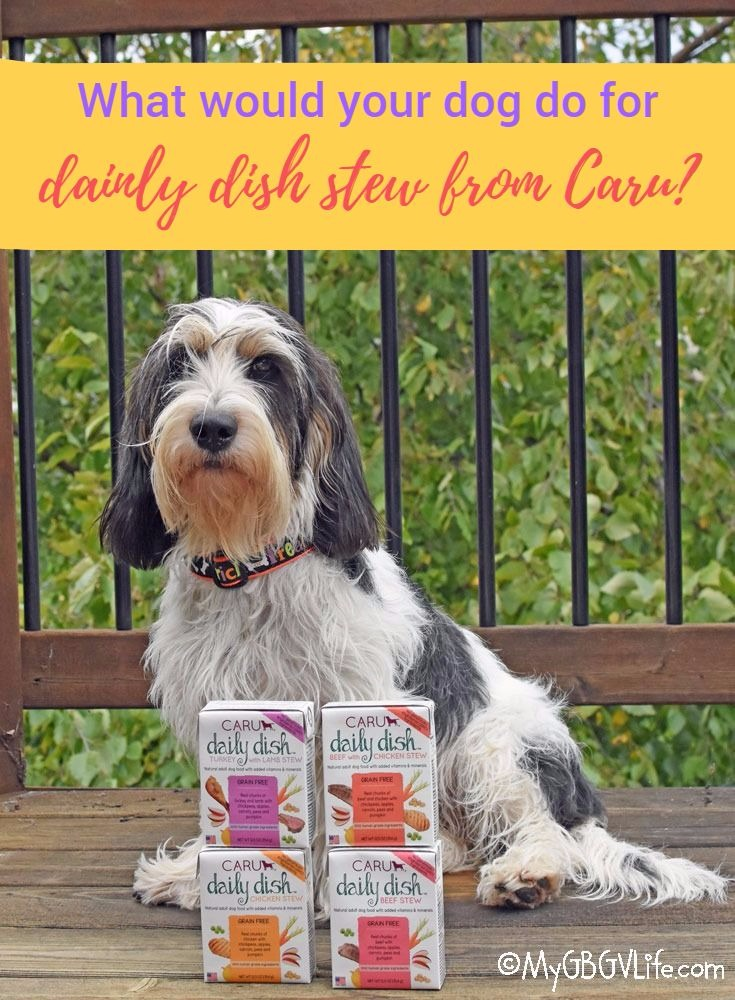 My GBGV Life What Will Your Dog Do For Daily Dish Stew From Caru?