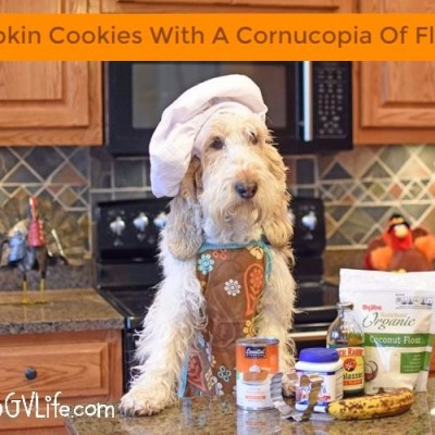 Emma's Pumpkin Cookies With A Cornucopia Of Flavor