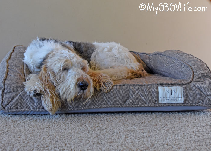 My GBGV Life The Brentwood Home Dog Bed - Stylish, Therapeutic Comfort