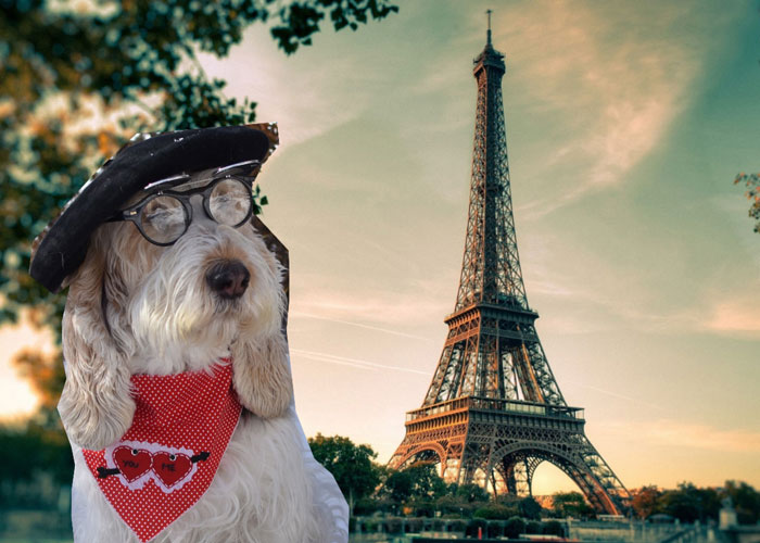 My GBGV Life Postcards From Paris For You On Valentine's Day