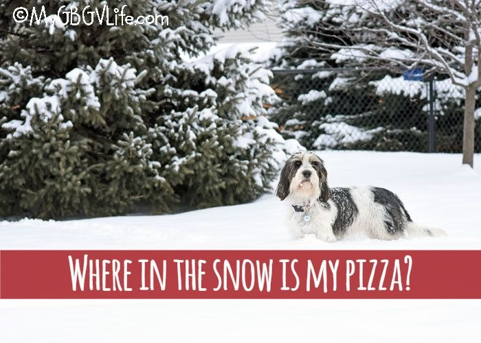 My GBGV Life Where In The Snow Is My Pizza?