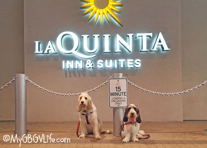 My GBGV Life Be Thankful For Good Dog Friendly Hotels