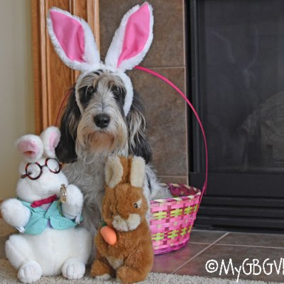When The Easter Bunny Goes Bad