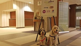 Wordless Wednesday From BlogPaws Kansas City