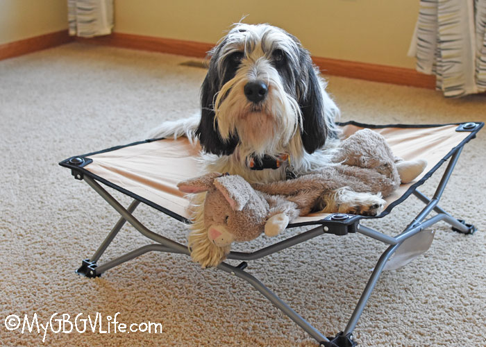 My GBGV Life Comfort On The Go With The Portable Pup Dog Cot – Giveaway
