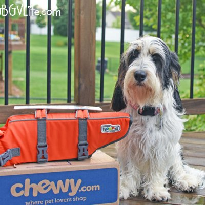 Keep Your Pup Safe In The Water With A Dog Life Jacket #ChewyInfluencer