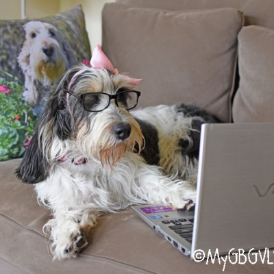 Miss Sassy Pants Becomes A Dog Party Planner