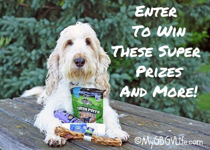"""My GBGV Life Your Dog Says, """"Enter The Red Barn Hot Summer Giveaway!"""""""