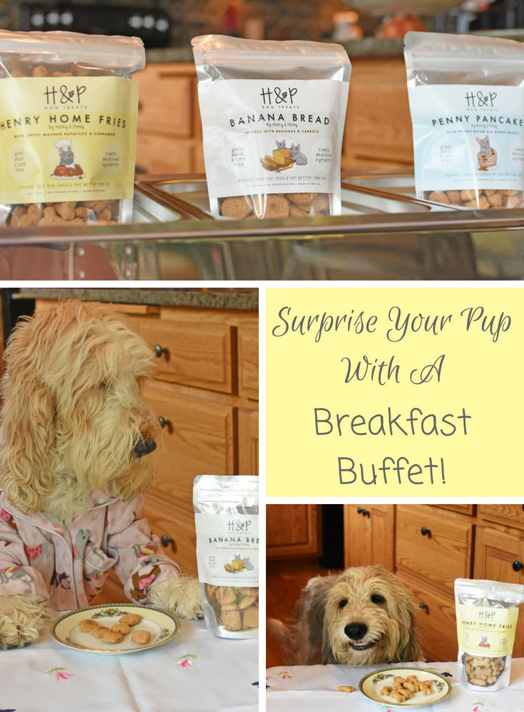 My GBGV Life Treat Your Pup To A Breakfast Buffet - Giveaway