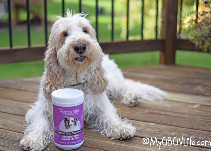 My GBGV Life Natural Joint Support - Put Pep In Your Pup's Step And Wag In Her Tail - Giveaway!