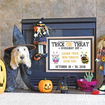 Take A Bow – Trick Or Treat Giveaway Hop 2018