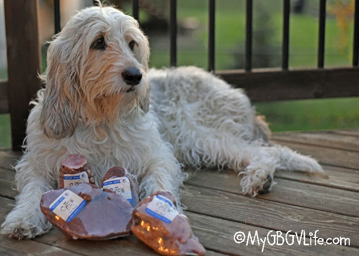 My GBGV Life Organic, All Natural Root Chews For Dogs